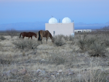 David Churchill's twin domes with horses